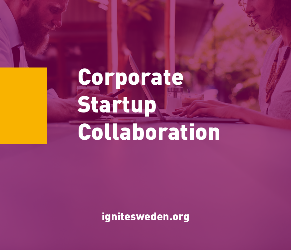 Ignite Sweden är ett projekt som drivs av LEAD, Sting & Things för att öka samarbeten mellan startups och storbolag